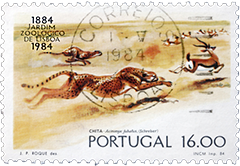 Stamp From Portugal