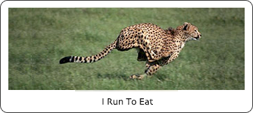 I Run To Eat