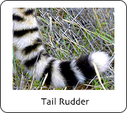 The Tail Rudder